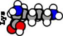 Lysine (500M)