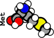 Methionine (1G)