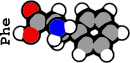 Phenilalanine (2G)