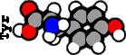 Tyrosine (5G)
